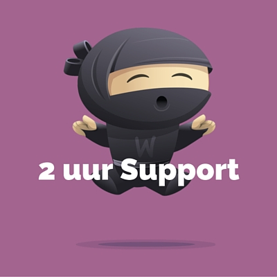 WooDemo - 2 uur Support