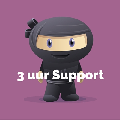 WooDemo - 3 uur Support