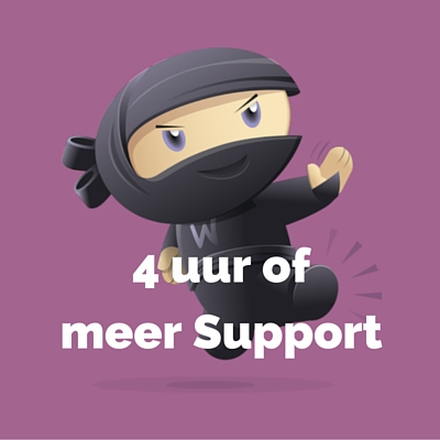 WooDemo - 4 uur of meer Support